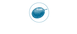 The Blue Olive Shop - Buy Olive Oil Online